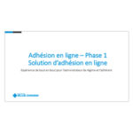 Phase1 Solution Adhesion