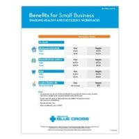 Image 06 2020 Benefits For Small Business Rate Summary En