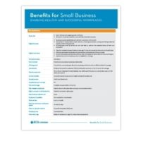 Image 06 2020 Benefits For Small Business Technical Document En